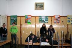 choinka2010_03