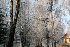 prawie_jak_zima_3