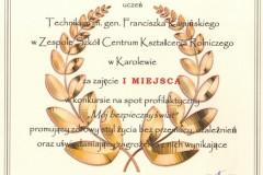 Dyplom-Mróź