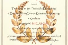 Dyplom-Rybitwa